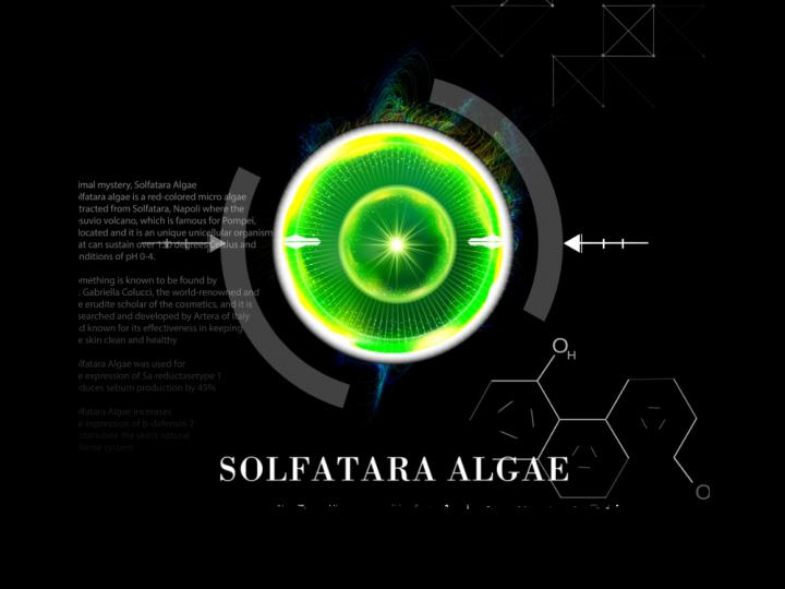 Fantastic Performance -SOLFATARA ALGAE-