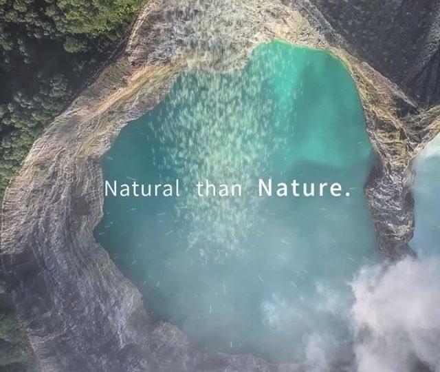 자연 그 이상의 자연 효능 그 이상의 효능 [솔파타라 알게]