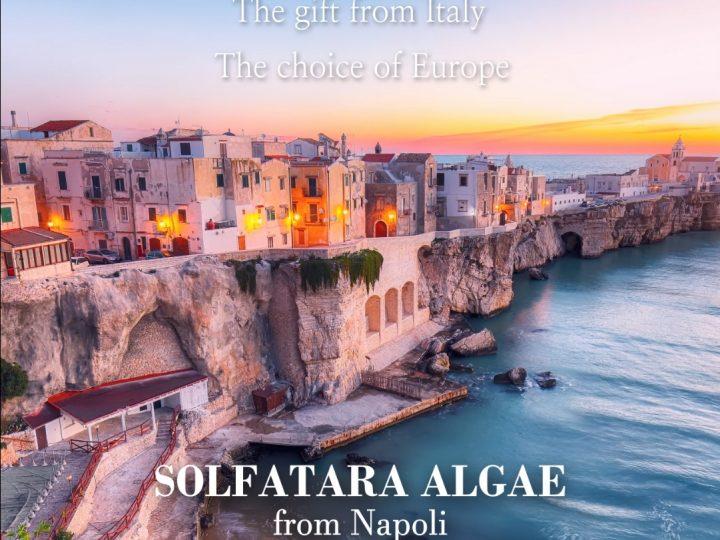 The gift from Italy, The choice of Europe [SOLFATARA ALGAE from Napoli]